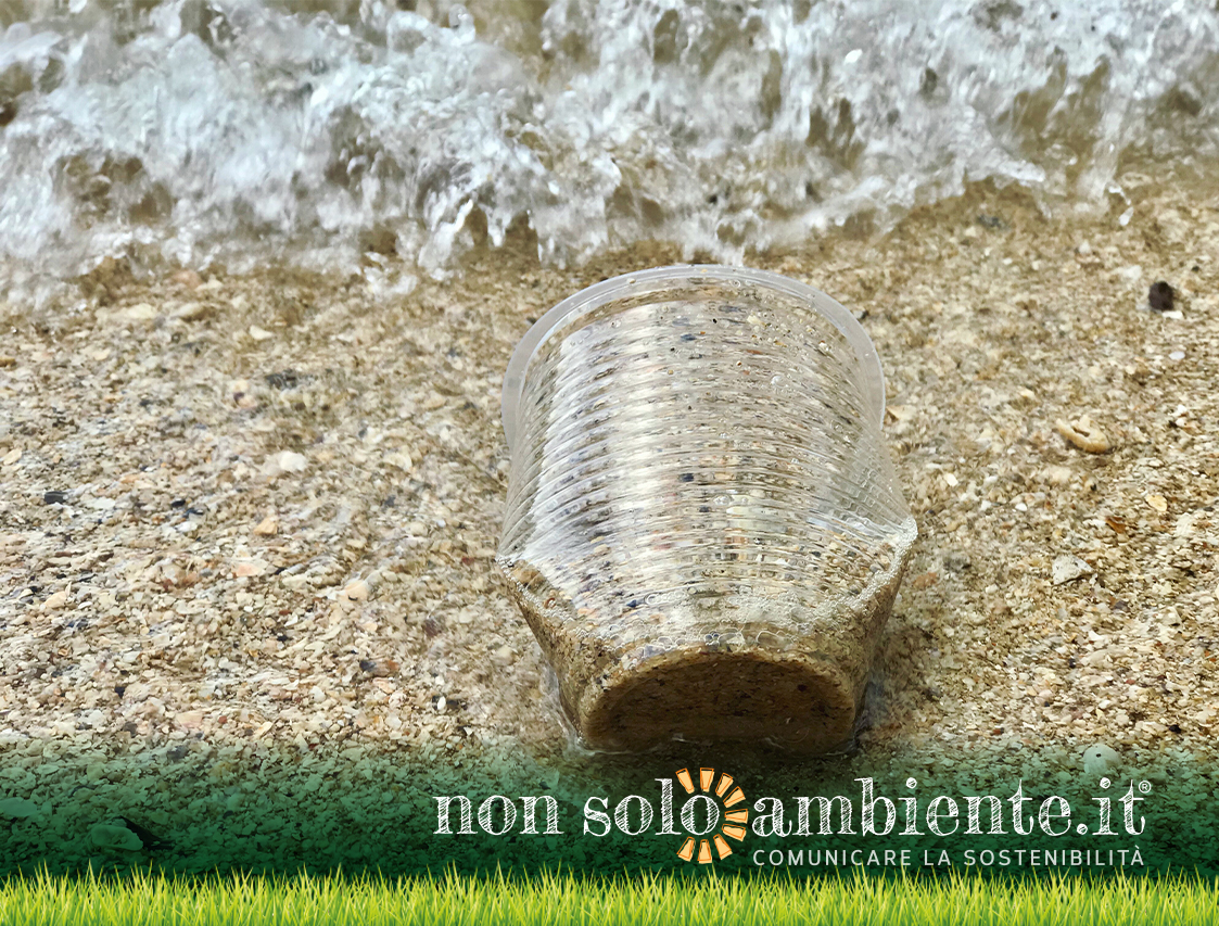 beach-litter-2019-nonsoloambiente